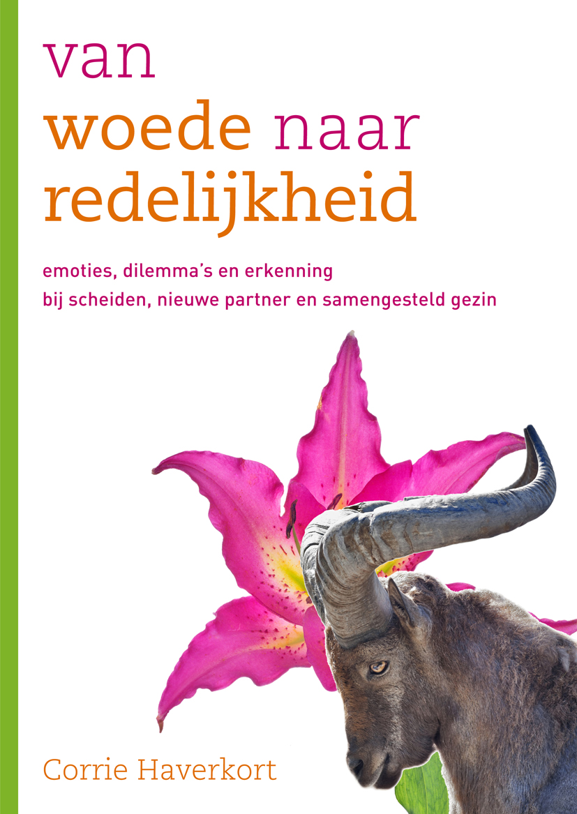 van woede naar redelijkheid Corrie Haverkort SWP